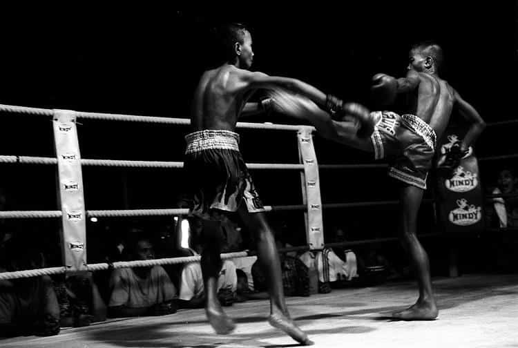muay thai  kick boxing thai boxing