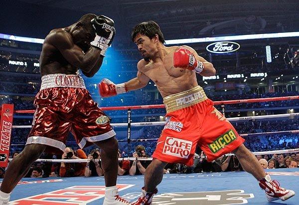 boxing_pygmaxia_Manny_Pacquiao