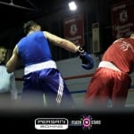 boxing patra fa