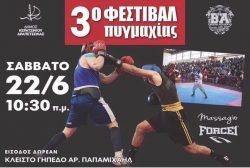 3ο Φεστιβάλ Πυγμαχίας