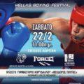5ο Φεστιβάλ Πυγμαχίας